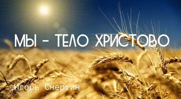 1456648656_pshenica