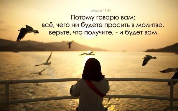 VI_91IoYf4s